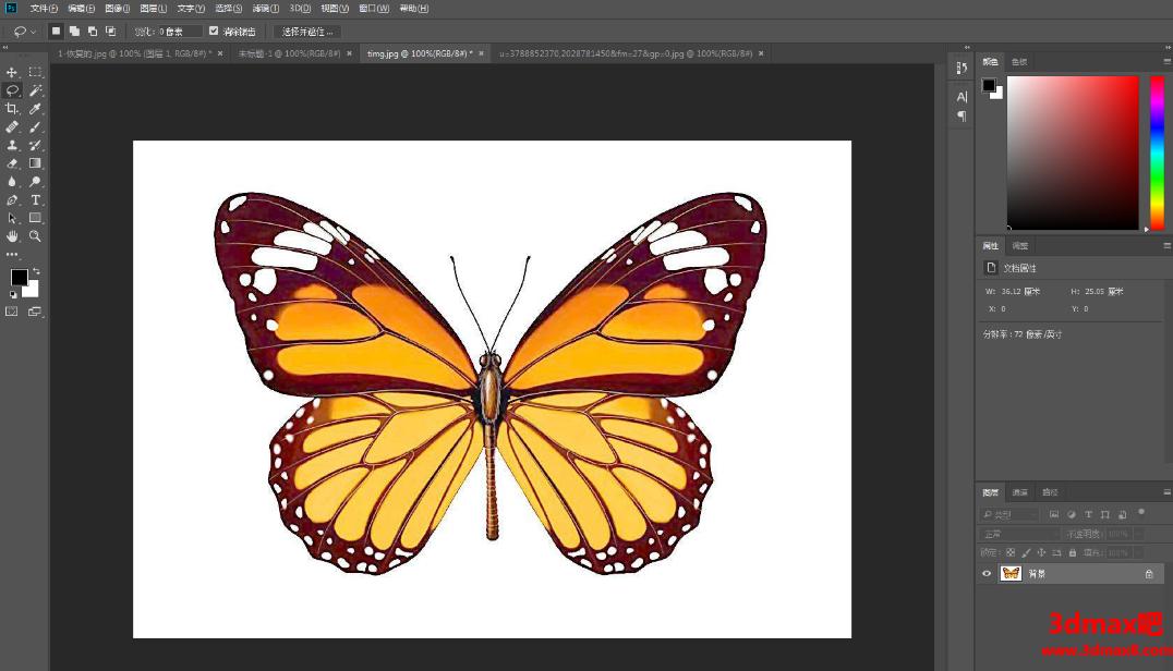 学习Photoshop软件套索工具抠图的方法技巧